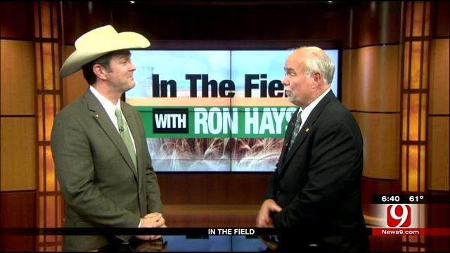 In The Field: Michael Kelsey