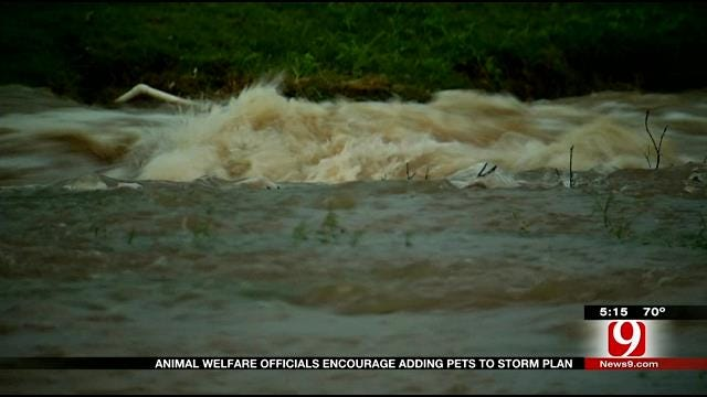 OKC Dogs Drowned In Flood Waters After Owners Left Them Tie Up