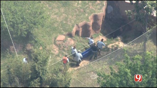 WEB EXTRA: Bob Mills SkyNews 9 HD Flies Over Escaped Tiger At OKC Zoo