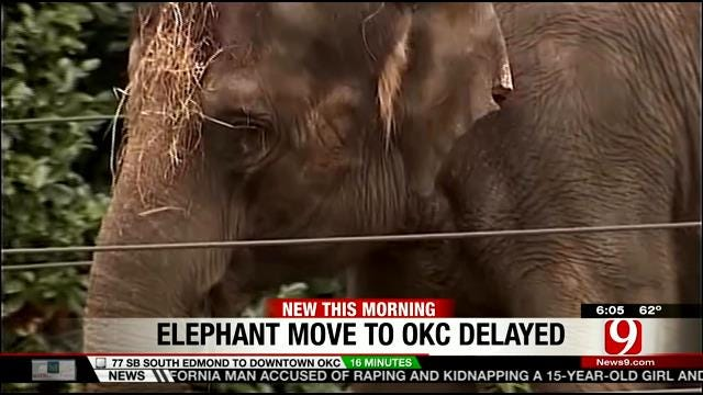 Another Bump In The Road For Seattle Elephants Being Transported To OKC