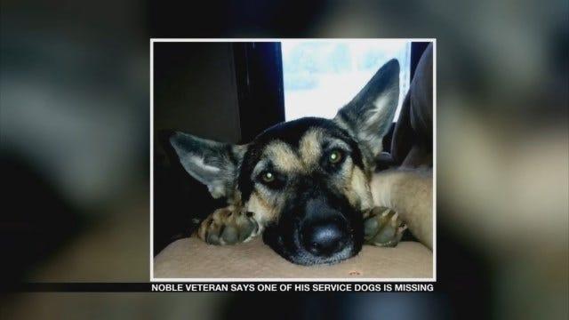 Noble Veteran Missing Service Dog