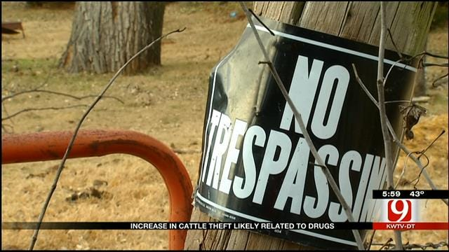 Cattle Rustling On The Rise In Oklahoma