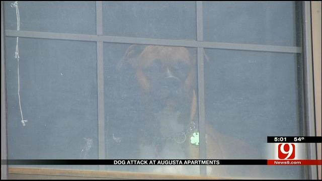 Woman Mauled By Dog At NW OKC Apartment Complex