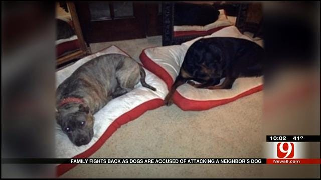 Yukon Family Gets Another Day In Court to Save Dogs