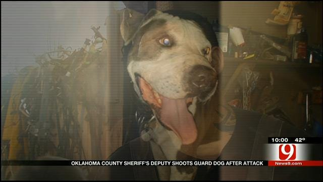 OK Co. Sheriff's Deputy Shoots Guard Dog After Attack