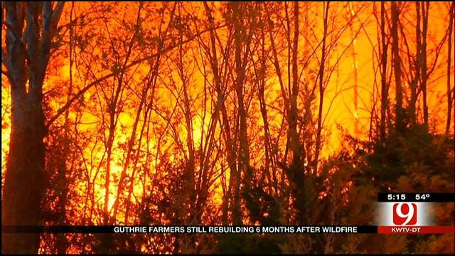 Guthrie Wildfire Victim Turns To Public For Help Reviving Organic Farm