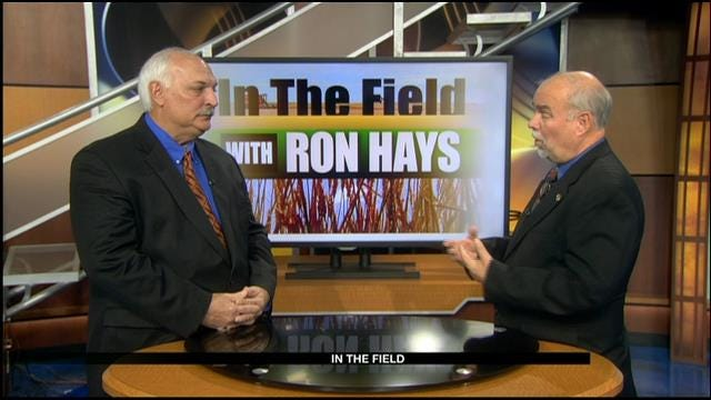 In The Field: Mark Hodges