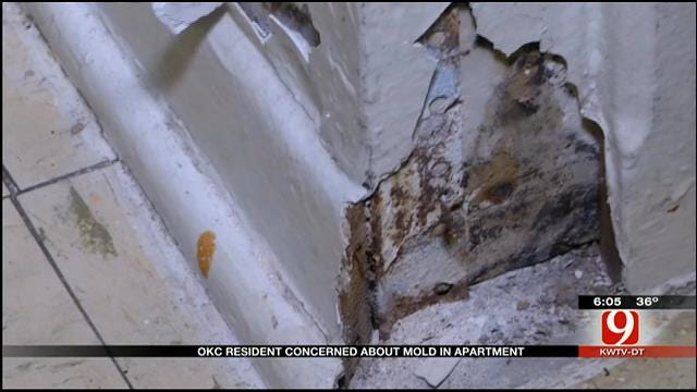 OKC Resident Concerned About Mold In Apartment