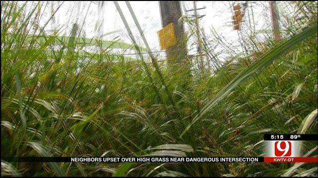 Neighbors Upset Over High Grass Blocking Intersection