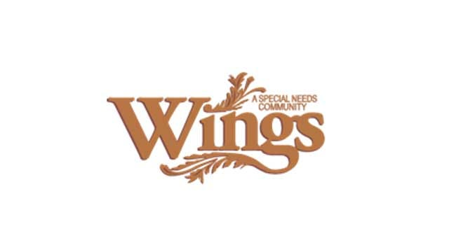 Found Causes: Wings