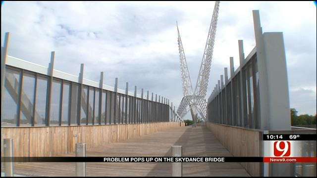 SkyDance Bridge Suffers Structural Problems