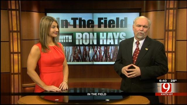 In The Field With Ron Hays: Leeanna Covington