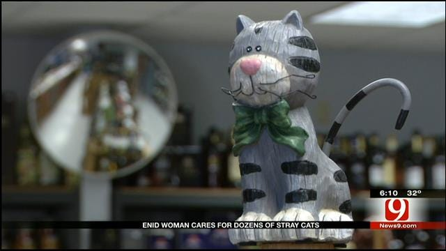 City Ordinance Causing Complications For Enid Animal Lover