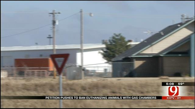 Petition Calls For Banning OK Gas Chambers To Euthanize Animals