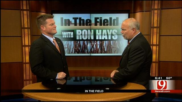 In The Field: Mike Schulte, Oklahoma Wheat Commission