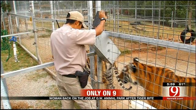 Employee Attacked By Tiger At Wynnewood Exotic Animal Park Returns To Work