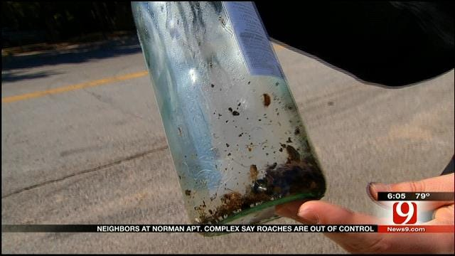 Roach Infestation Forces Residents Out Of Norman Apartment Complex