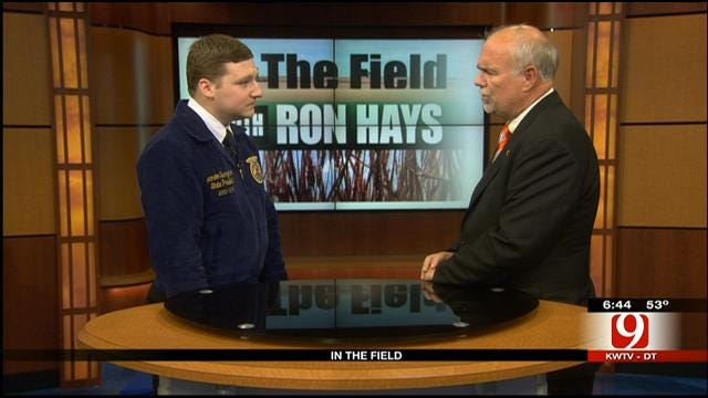 In The Field: FFA Organization