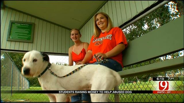 Three OSU Students Rescue Abandoned Dog Tortured By Kids
