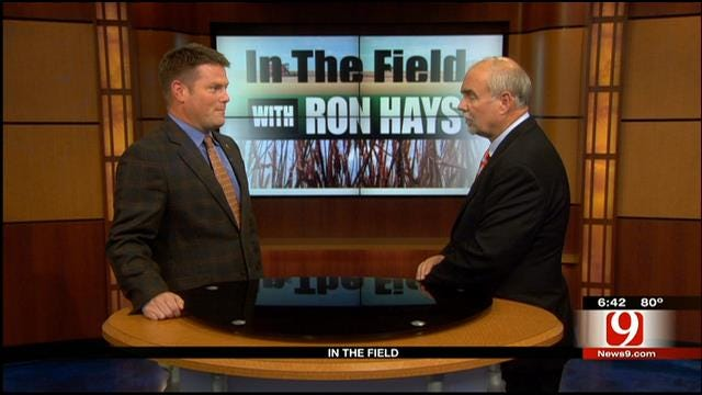 in The Field: Mike Shulte, Oklahoma Wheat Commission