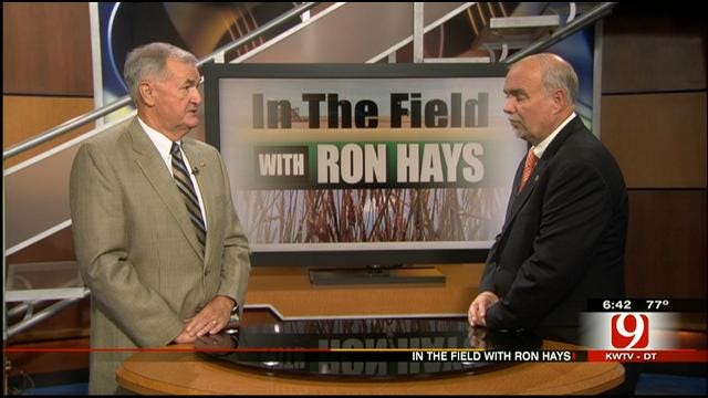 In The Field: Ron Sholar, Executive Director Of Oklahoma Oil Seed Commission