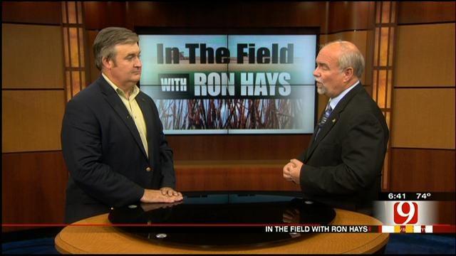 In The Field: 2013 Farm Bill