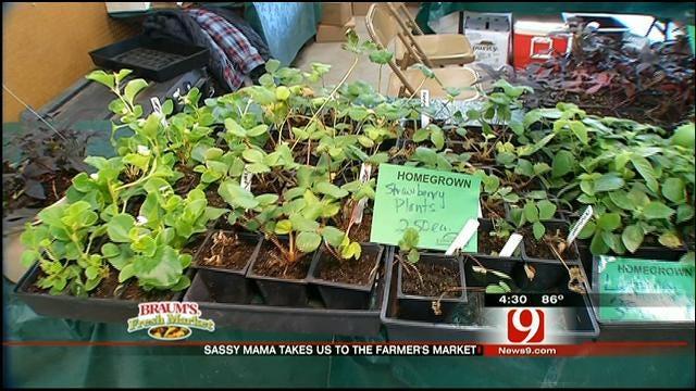 The Sassy Mama Visits An Oklahoma Farmers' Market