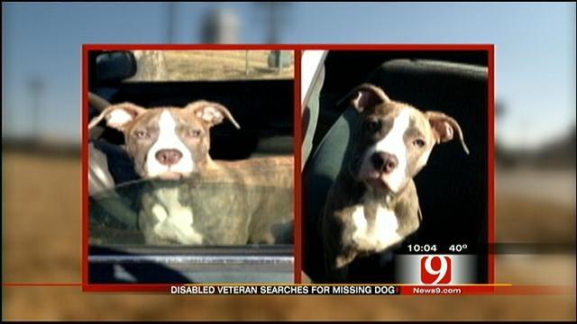 Cushing Disabled Veteran Seeks Help Finding Missing Service Dog