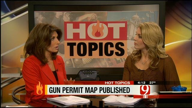 Hot Topics: Gun Permit Map Published