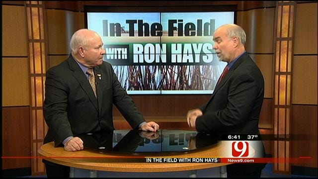 In The Field: Farm Bill Review