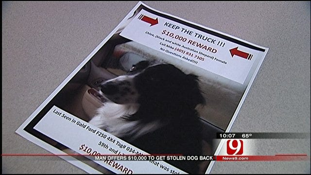 Stolen Truck Found In OKC, Retired Trooper Still Searching For Missing Dog