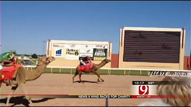 News 9 Sweeps Ostrich, Camel Races At Remington Park