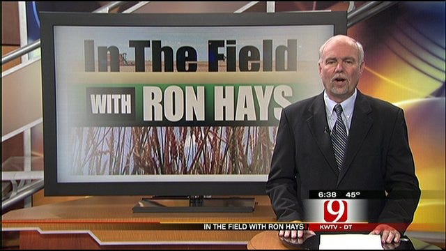 In The Field: Ron Hays Talks About 2012 Farm Policies