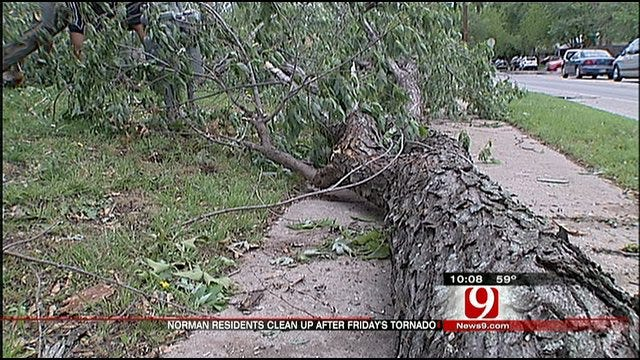 Norman Starts Clean Up From Tornado Damage