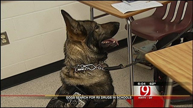 Dogs Trained To Search For Drugs At Oklahoma Schools