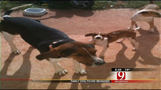 Grady County Family Says Their Dog Was Beheaded