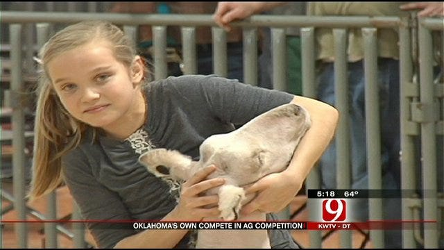 Show Season Begins In Rural Oklahoma