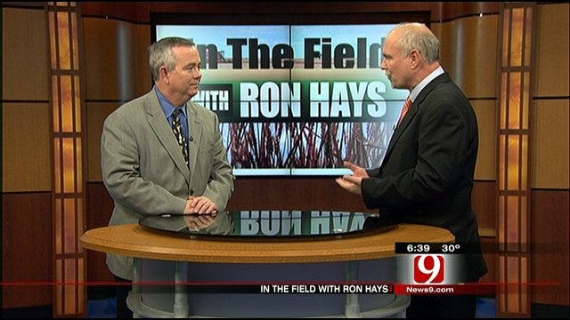 In The Field: Preview Of 2012 Cattle Industry Convention