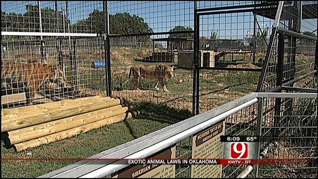 Group Calls On Governor To Restrict Wild Animal Ownership