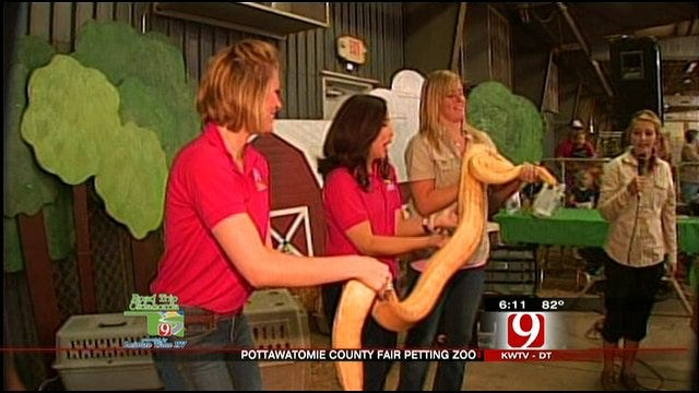 Christina, Lauren Pet Animals With Children At Children's Barnyard