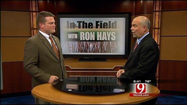 In The Field With Ron Hays: Hot And Dry Summer's Effects On Wheat Pastures