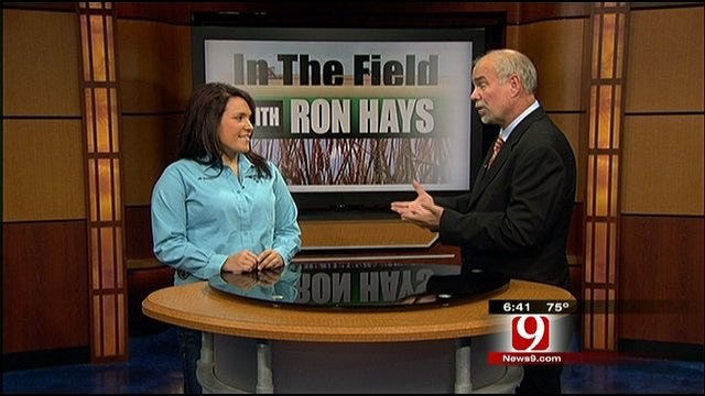 In The Field With Ron Hays: Oklahoma Beef Ambassador