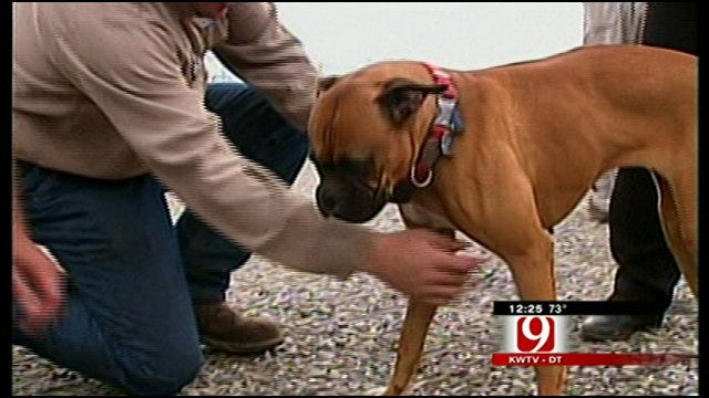 Family Reunited With Dog After Tornado