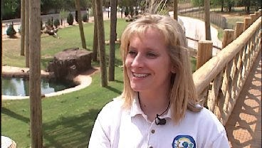 WEB EXTRA: Veterinarian Talks About Health Of Baby, Mama Elephant