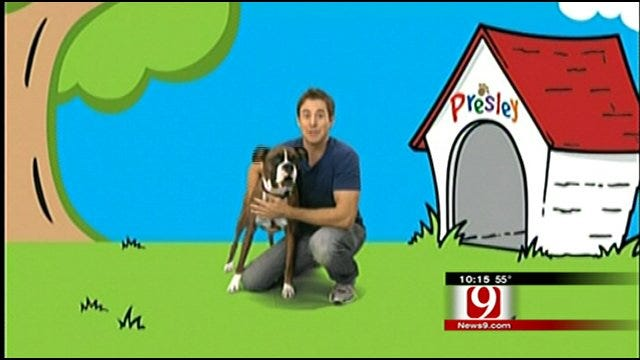 Manners Class Is Blue's Clues With Sooner Twist