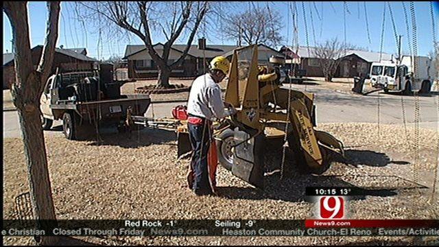Consumer Watch: Company Removes Stump From Woman's Home For Free
