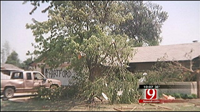Consumer Watch: Tree Trimming Company Takes Tree, Leaves Stump Again