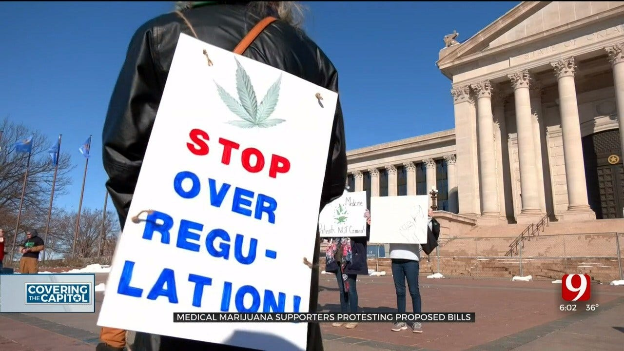 Medical Marijuana Supporters Protest Proposed Bills