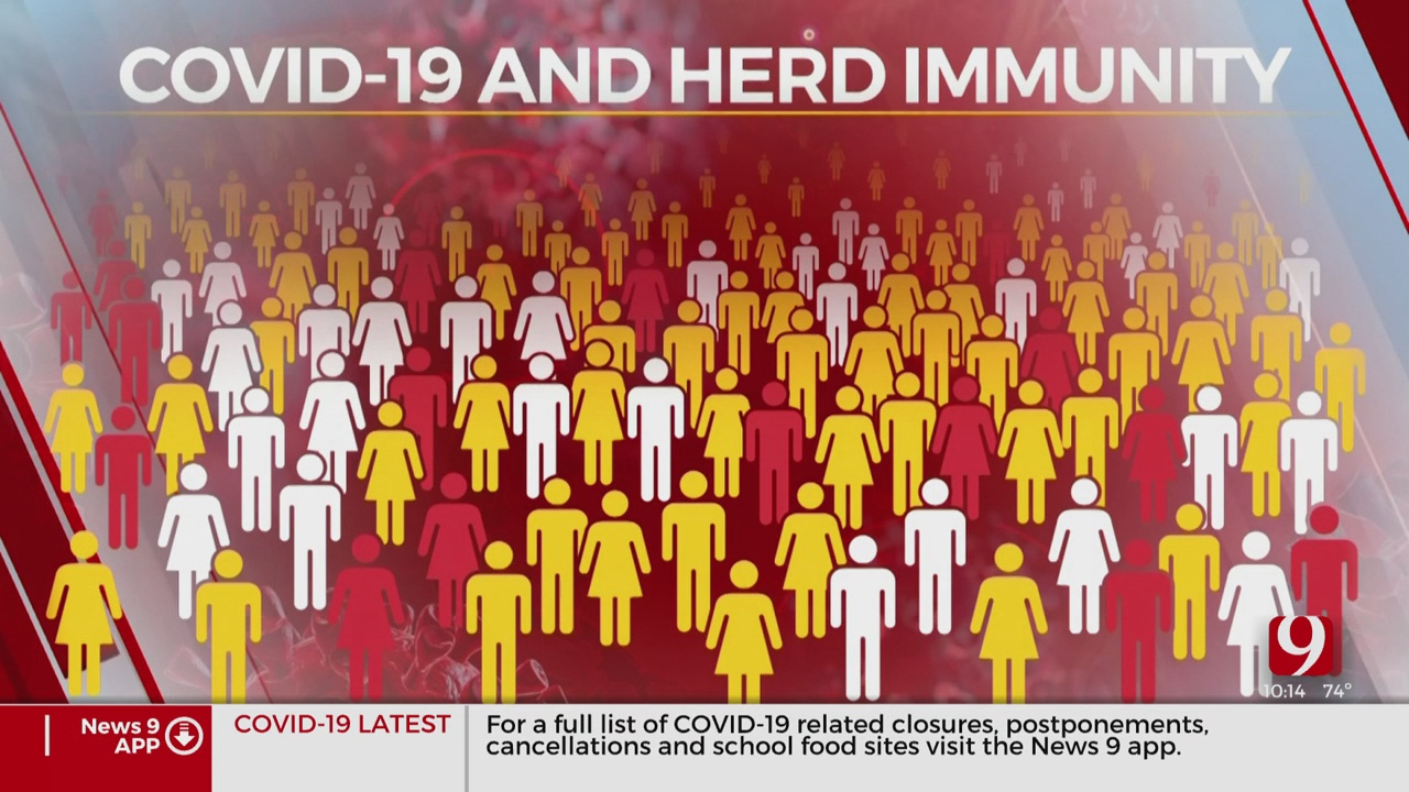 Coronavirus (COVID-19) Recovery Depends on Herd Immunity, Doctor Says