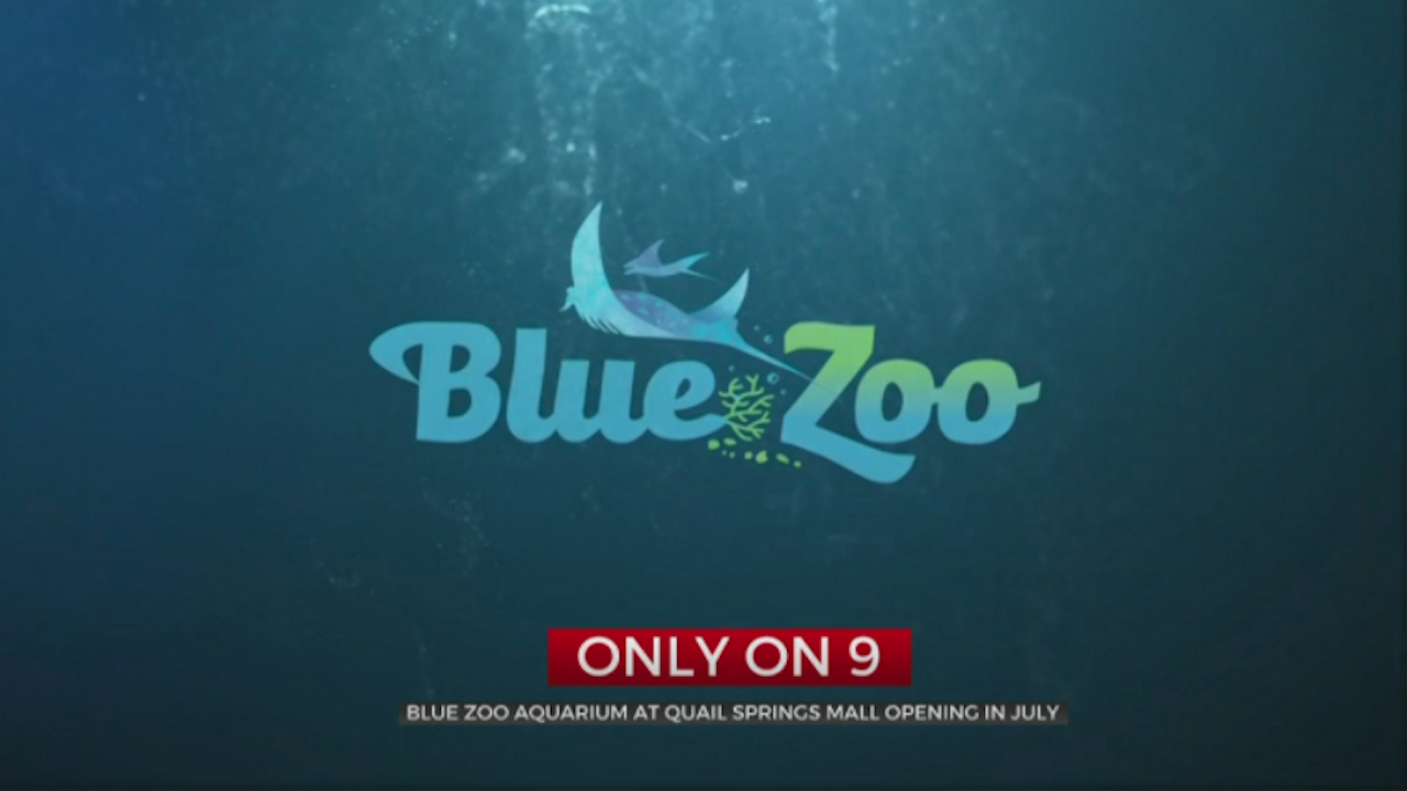OKC's First Aquarium Set To Open In July